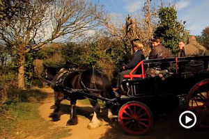 Horse and cart on Sark